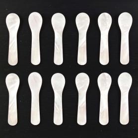 Petites cuillères en nacre - Ensemble de 12 pièces