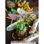 Salsa vegetale gourmet