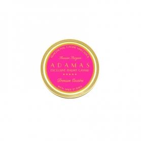 Oscietra caviar ADAMAS® , 100gr