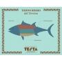Buzzonaglia di tonno rosso in olio EVO, 320 gr - Testa Conserve