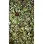 Sulcis artichokes in olive oil, 280 gr - Bon'Ora
