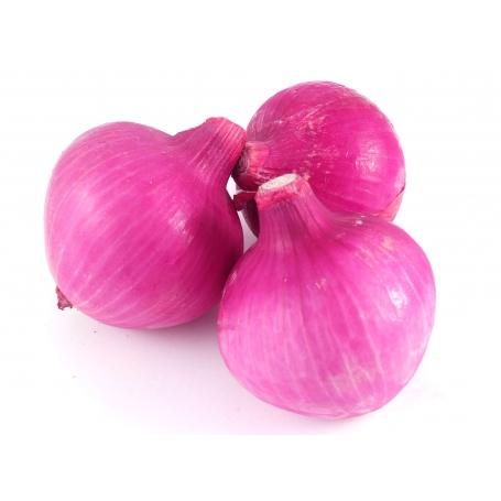 Cipolla rossa Belendina di Andora, 1 kg (Presidio SlowFood)
