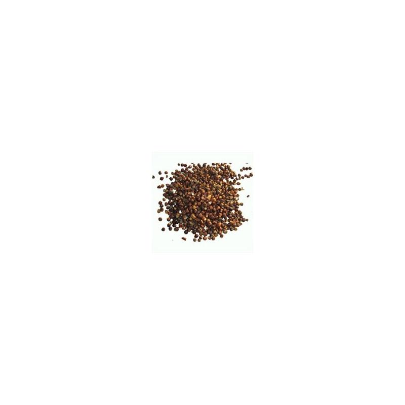 I grani del paradiso, pepe Malagetta della Guinea