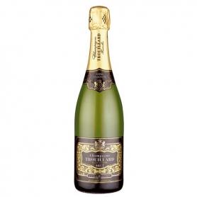 Trouillard - Champagne Extra Selection l. 0,75