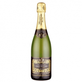 Trouillard - Champagne Extra Brut Selection l. 0,75