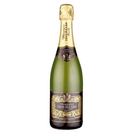 Champagne Trouillard Extra Selection Brut, l. 0,75 - astuccio 1 bott. - Gli Champagne