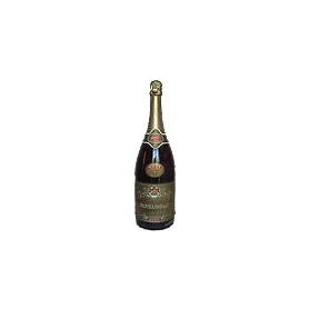 Champagne Trouillard Elexium Brut, Magnum l.1,5 - Gli Champagne
