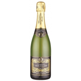 Champagne Trouillard Extra Selection, Magnum l.1,5