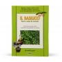 Il Basilico - Pesto e salse mortaio - Letture di gusto