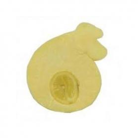 Provola delle Madonie con il limone, Latte di vacca, 1 kg. - Sicilia
