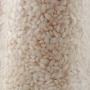 Riso Vialone Nano, 1 kg - Riserva San Massimo