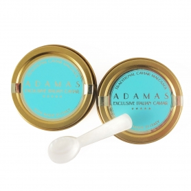 Pair of Caviar 10 gr (Cobice) + Spoon in mother of pearl