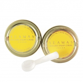 Pair of Caviar 10 gr (Asetra) + Spoon in mother of pearl