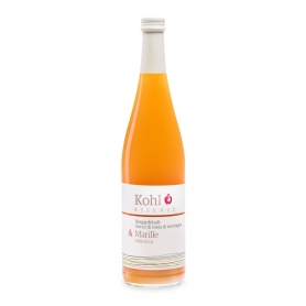 Juice of mountain apple and apricot - Alto Adige, 750 ml