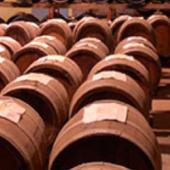 Verkauf von Weinen online, unser virtueller Keller