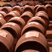 Wines online, our virtual cellar