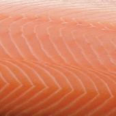 Balik salmon