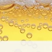 Le monde de la bière